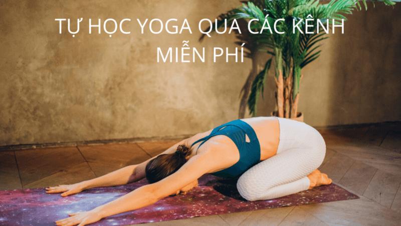 The Yoga Room phù hợp cho những ai đang tìm kiếm các phương pháp trị liệu và nâng cao sức khỏe tại nhà nhẹ nhàng